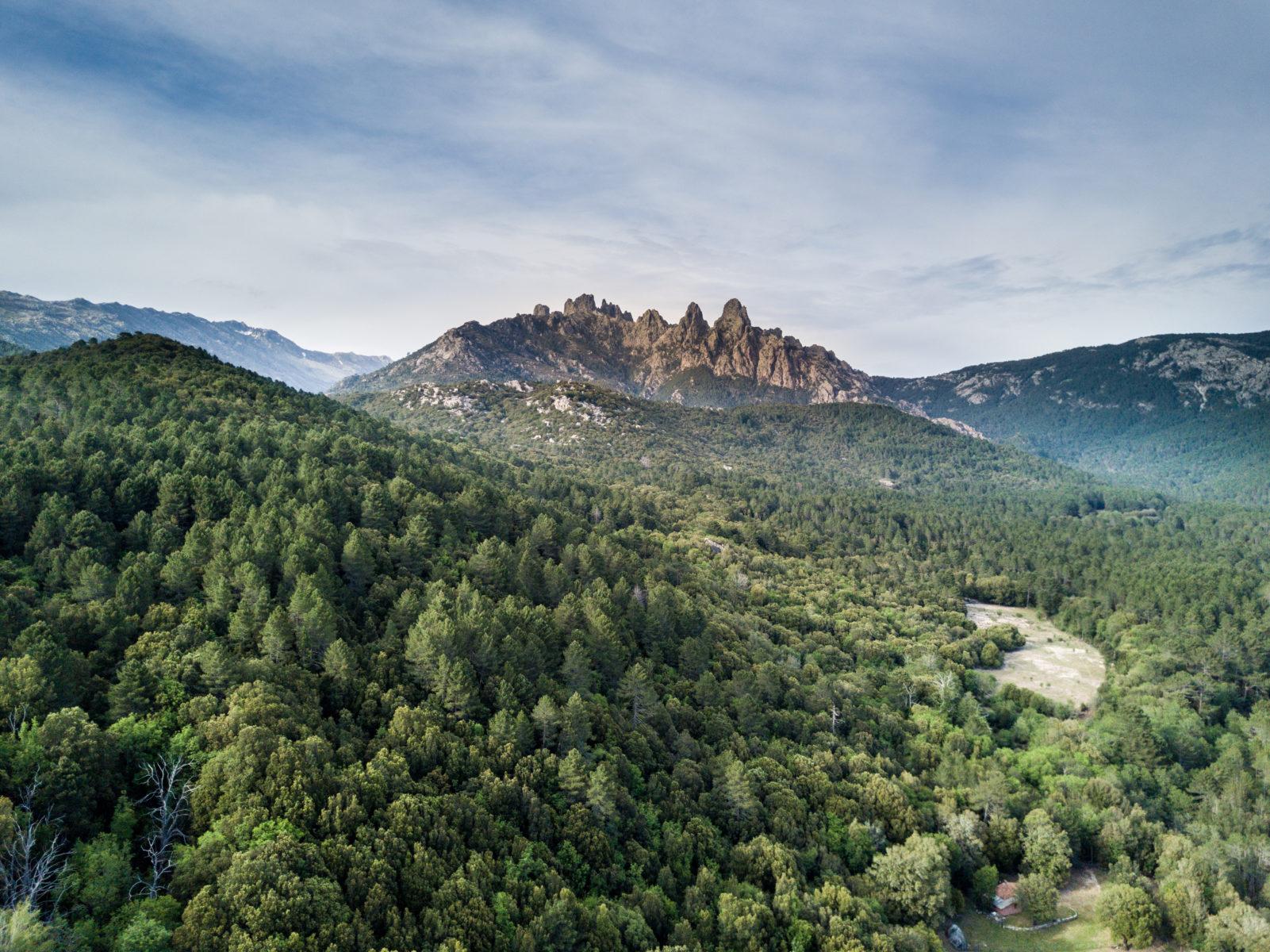 montagnes corses dans l alta rocca
