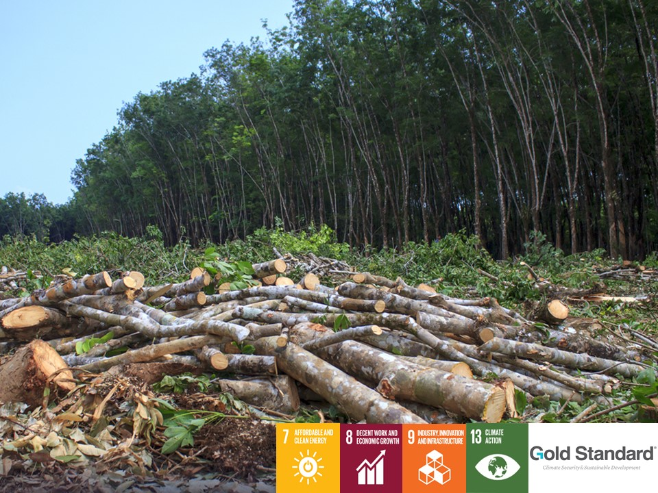 Production d'énergie à partir de DÉCHETS de bois d'une usine de pâte à papier et cellulose